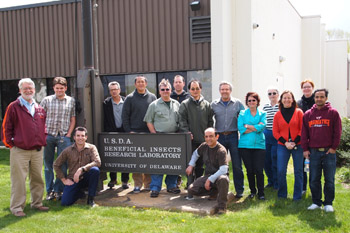 Researchers and graduate students meet for a workshop on the identification of natural enemies of the brown marmorated stink bug. Kim Hoelmer, USDA Agricultural Research Service.